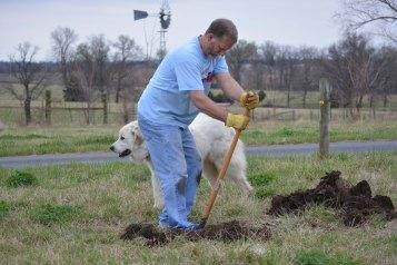 Digging Holes 2