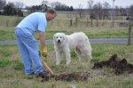 Digging Holes 3